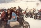 Reinhard 1985