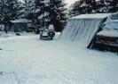 Henning 1993