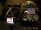 Honk 2011
